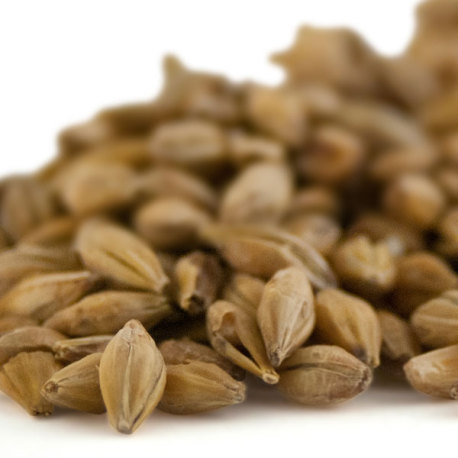 Weyermann® Acid Malt
