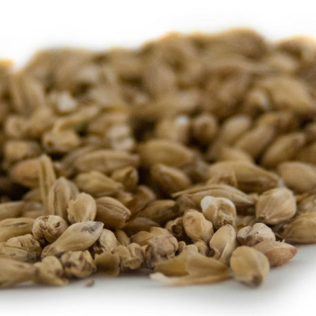Briess 2-Row Malt