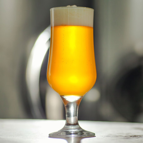 She's a Brut, Clark! Brut IPA Extract Kit