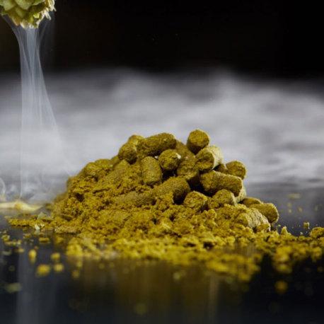 Cryo LupuLN2, Mosaic Hop Pellets, 1 oz
