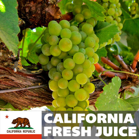 Pinot Grigio Fresh Juice, 6 gallons (California)