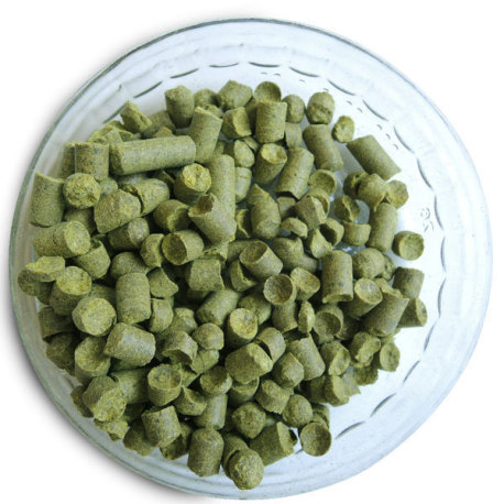 Hallertau Hop Pellets (German) - 1 oz.