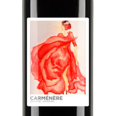 Carmenere Self Adhesive Wine Labels, pkg of 30