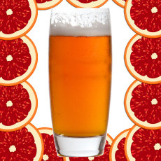 Blood Orange Fruitastic IPA Extract Kit - Brewers Reserve