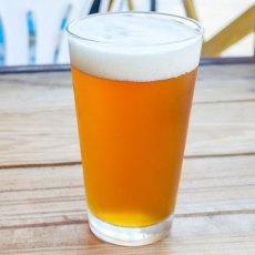 Martha's Hopyard East Coast SIPA Extract Kit - Brewers Reserve