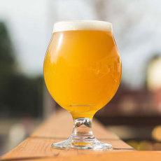 Shake it Good Milkshake IPA Extract Kit - Brewers Reserve