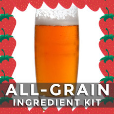 Strawberry Fruitastic IPA All-Grain Kit - Brewer's Reserve