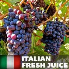 Amarone Fresh Juice, 6 gallons (Italian)