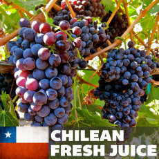 Chilean Merlot Fresh Juice, 6 gallons
