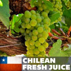 Chilean Chardonnay Fresh Juice, 6 gallons