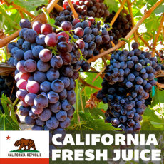 White Zinfandel (Blush) Fresh Juice, 6 Gallons (California)
