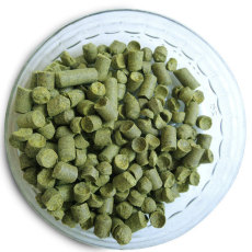 Experimental 07270 Hop Pellets, 1 oz